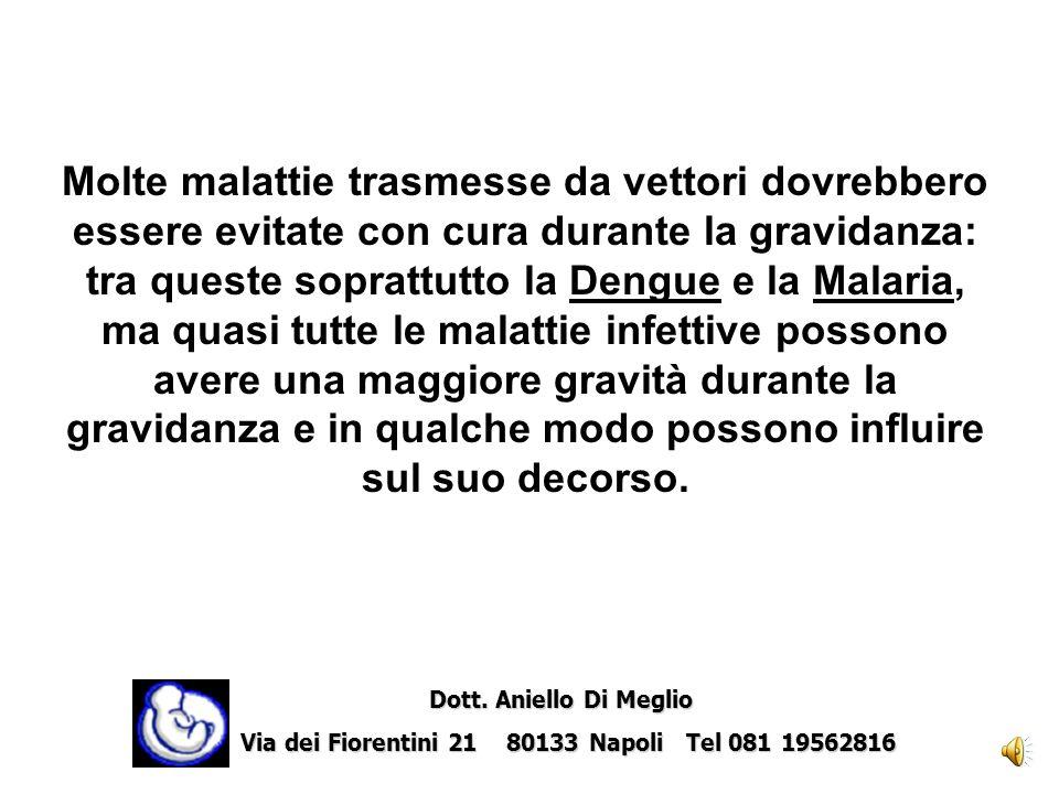 tra queste soprattutto la Dengue e la Malaria,