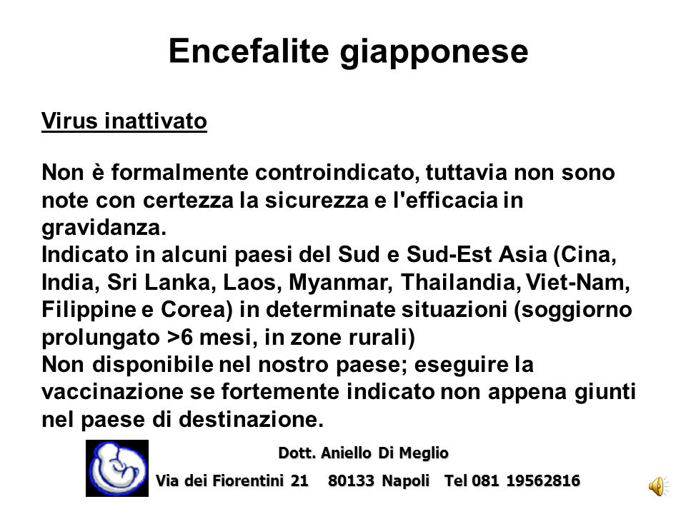 Encefalite giapponese