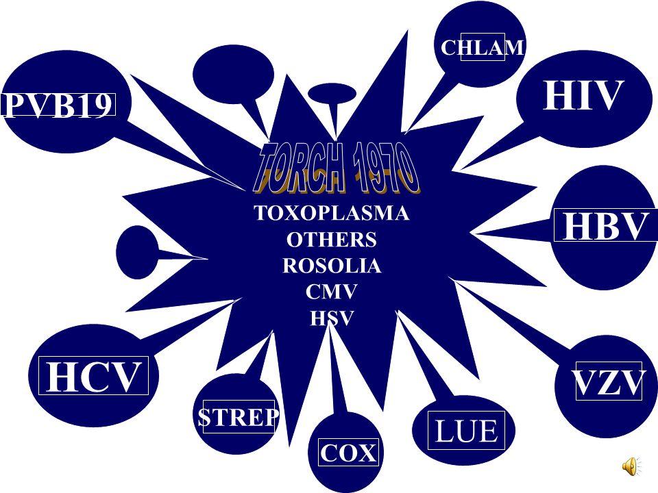 HIV HCV HBV PVB19 VZV TORCH 1970 LUE STREP COX CHLAM TOXOPLASMA OTHERS
