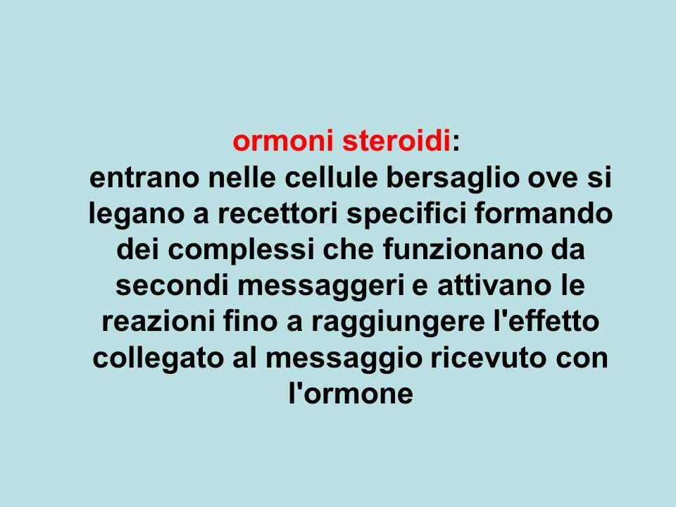 ormoni steroidi: entrano nelle cellule bersaglio ove si legano a recettori specifici formando dei complessi che funzionano da secondi messaggeri e attivano le reazioni fino a raggiungere l effetto collegato al messaggio ricevuto con l ormone