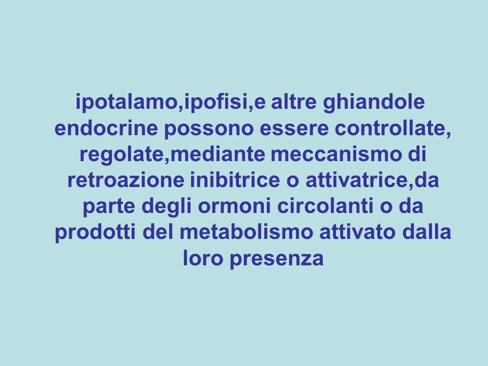 ipotalamo,ipofisi,e altre ghiandole endocrine possono essere controllate, regolate,mediante meccanismo di retroazione inibitrice o attivatrice,da parte degli ormoni circolanti o da prodotti del metabolismo attivato dalla loro presenza