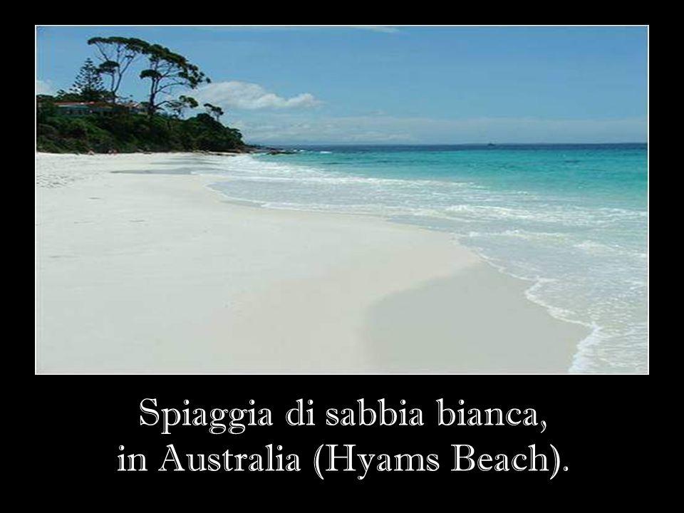 Spiaggia di sabbia bianca, in Australia (Hyams Beach).