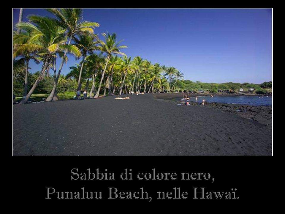 Punaluu Beach, nelle Hawaï.