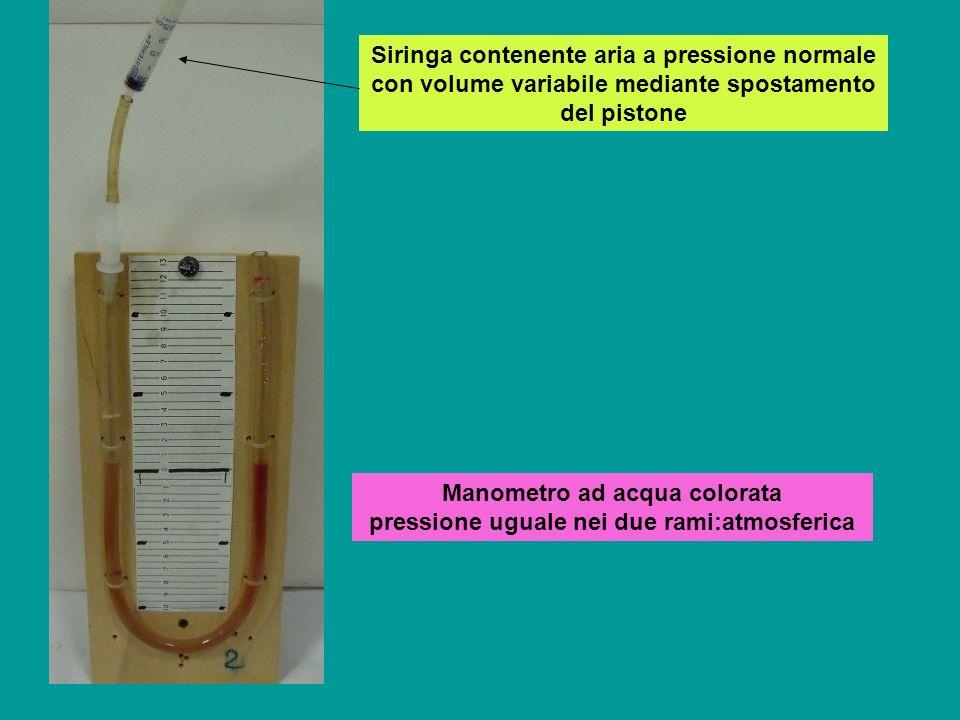 Manometro ad acqua colorata pressione uguale nei due rami:atmosferica