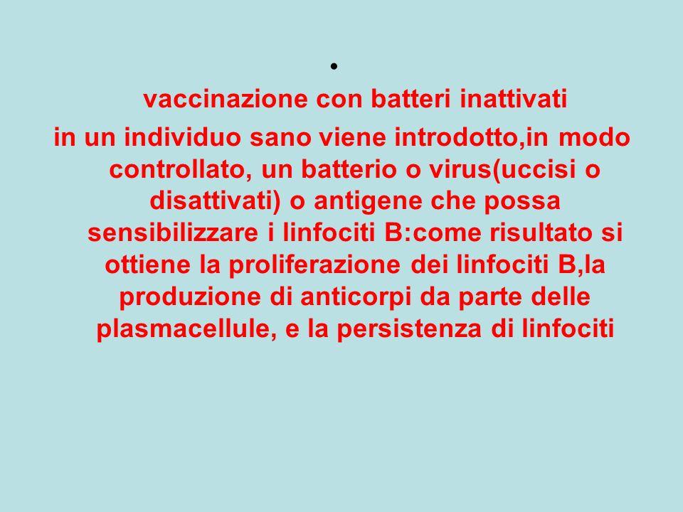vaccinazione con batteri inattivati