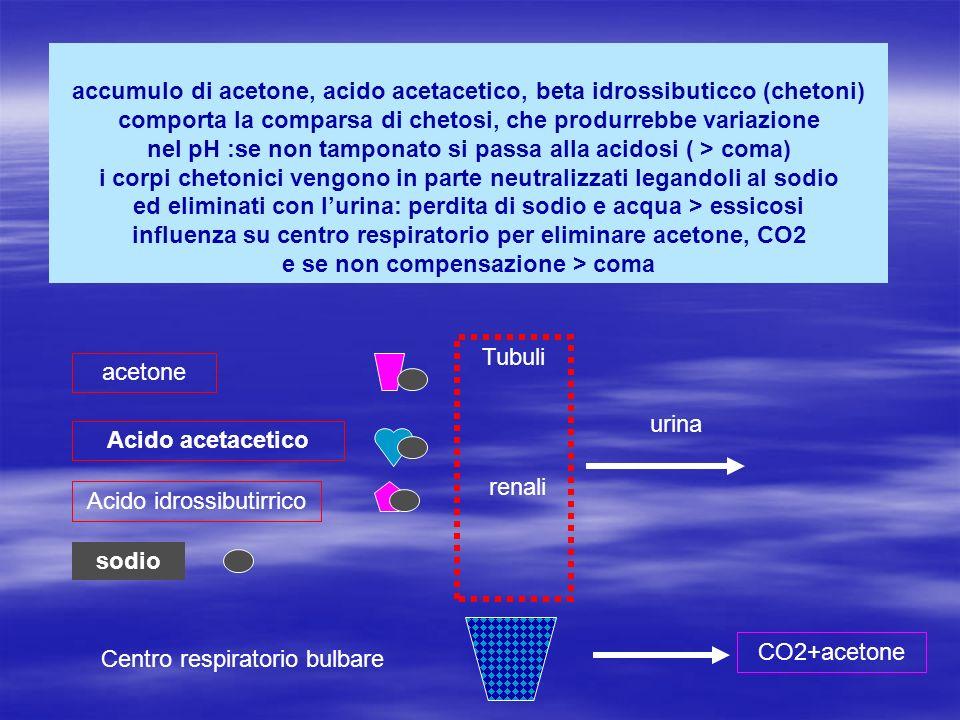 Acido idrossibutirrico