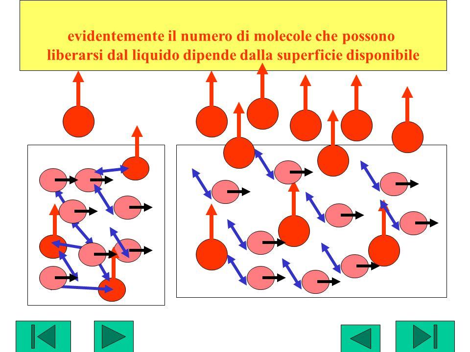 evidentemente il numero di molecole che possono