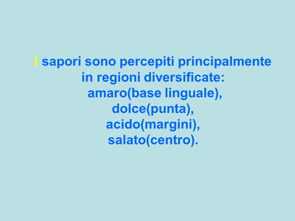 I sapori sono percepiti principalmente in regioni diversificate: amaro(base linguale), dolce(punta), acido(margini), salato(centro).
