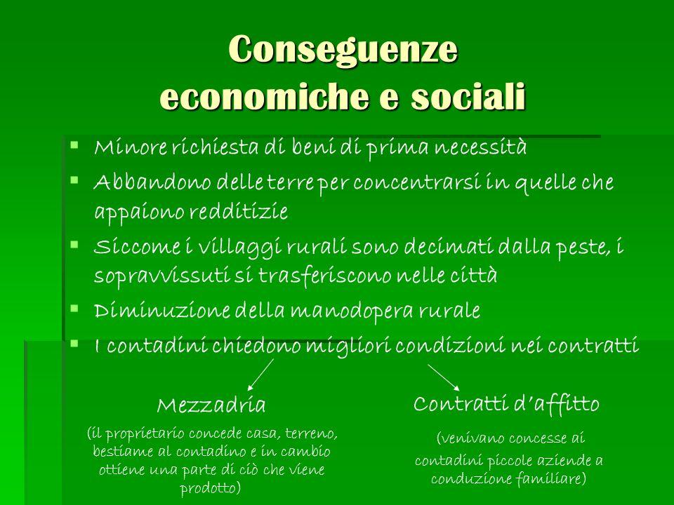 Conseguenze economiche e sociali