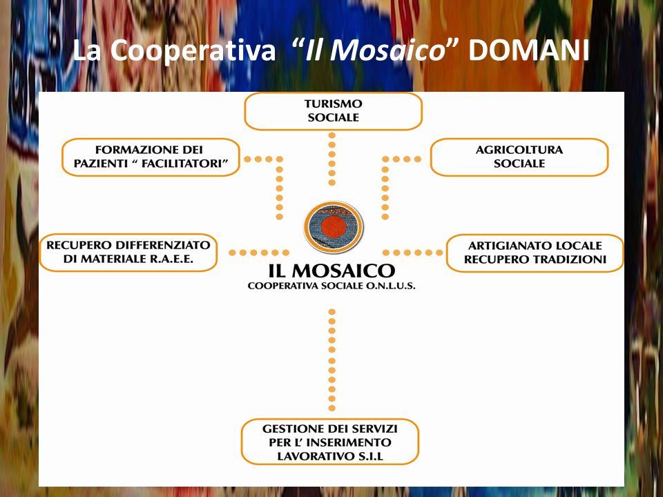 La Cooperativa Il Mosaico DOMANI