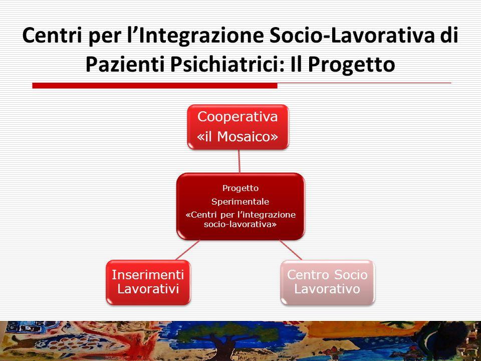 Centri per l'Integrazione Socio-Lavorativa di Pazienti Psichiatrici: Il Progetto