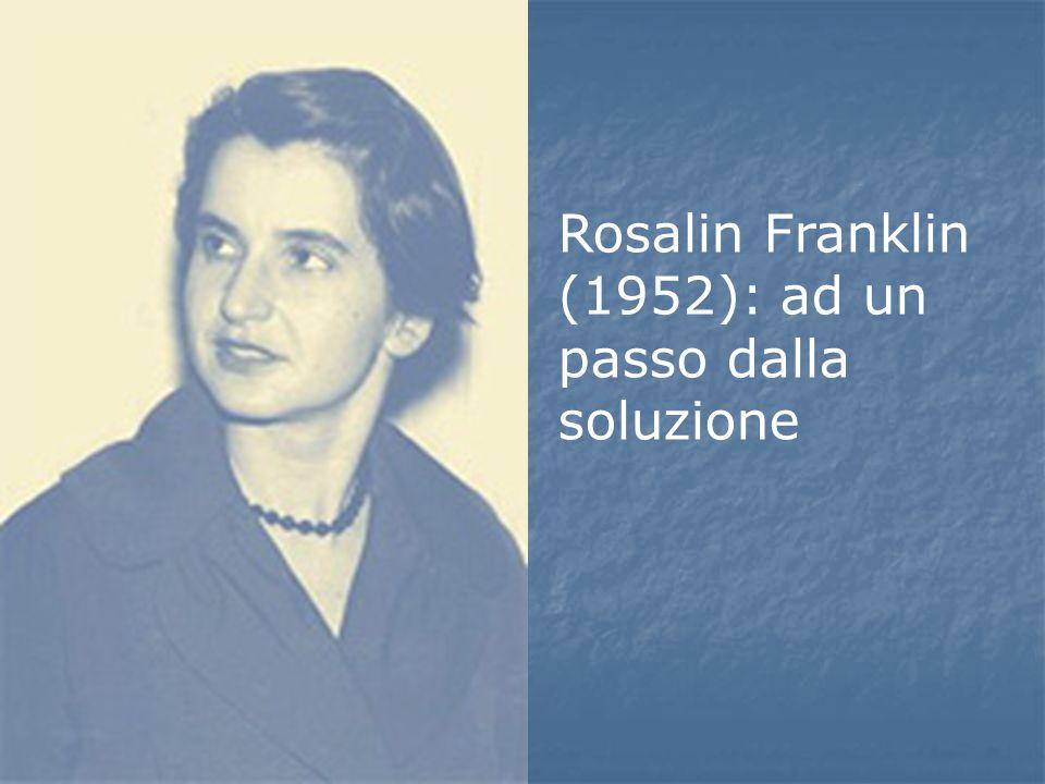 Rosalin Franklin (1952): ad un passo dalla soluzione