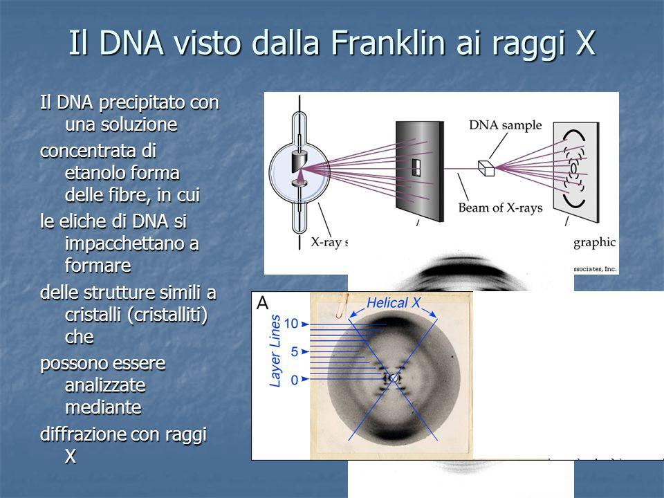 Il DNA visto dalla Franklin ai raggi X