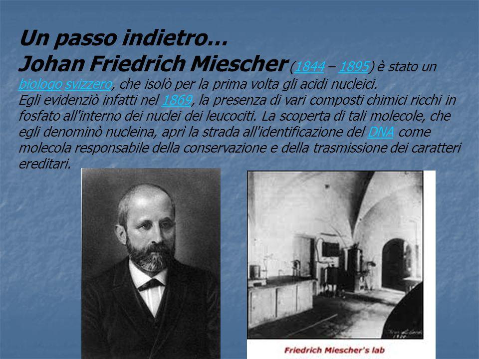 Un passo indietro… Johan Friedrich Miescher (1844 – 1895) è stato un biologo svizzero, che isolò per la prima volta gli acidi nucleici.
