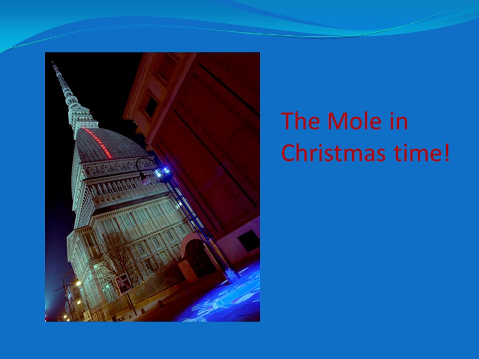 The Mole in Christmas time!