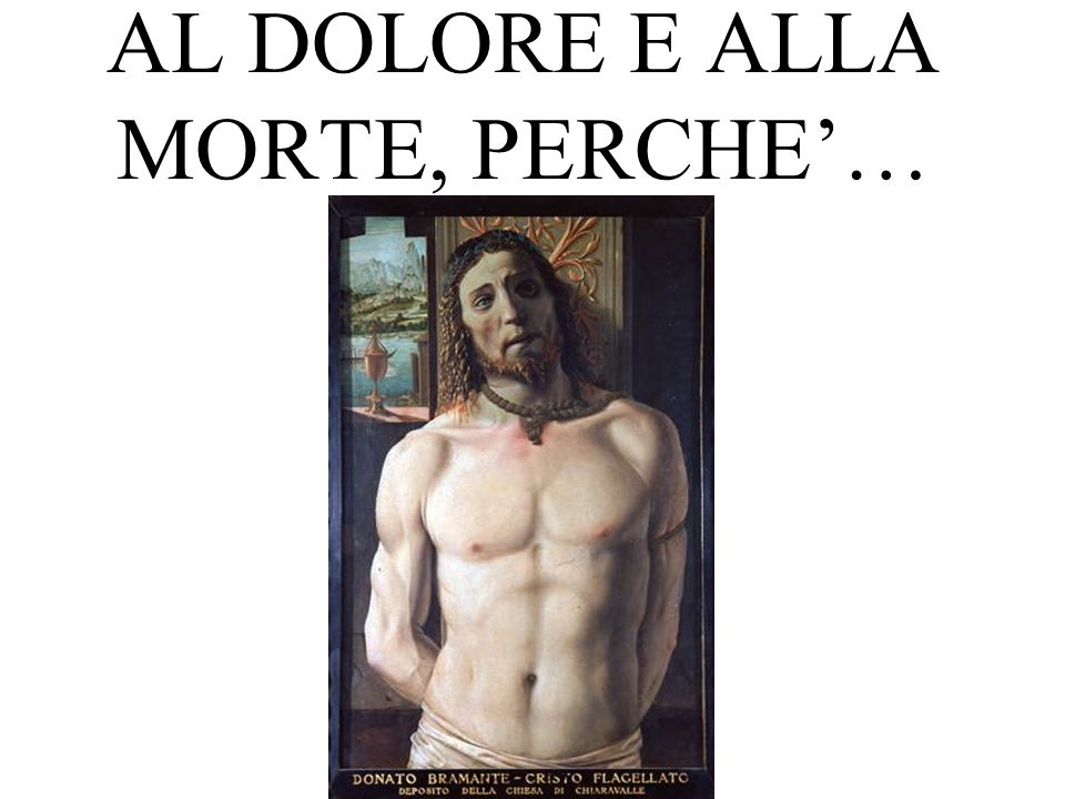 AL DOLORE E ALLA MORTE, PERCHE'…
