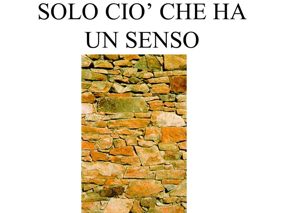 SOLO CIO' CHE HA UN SENSO