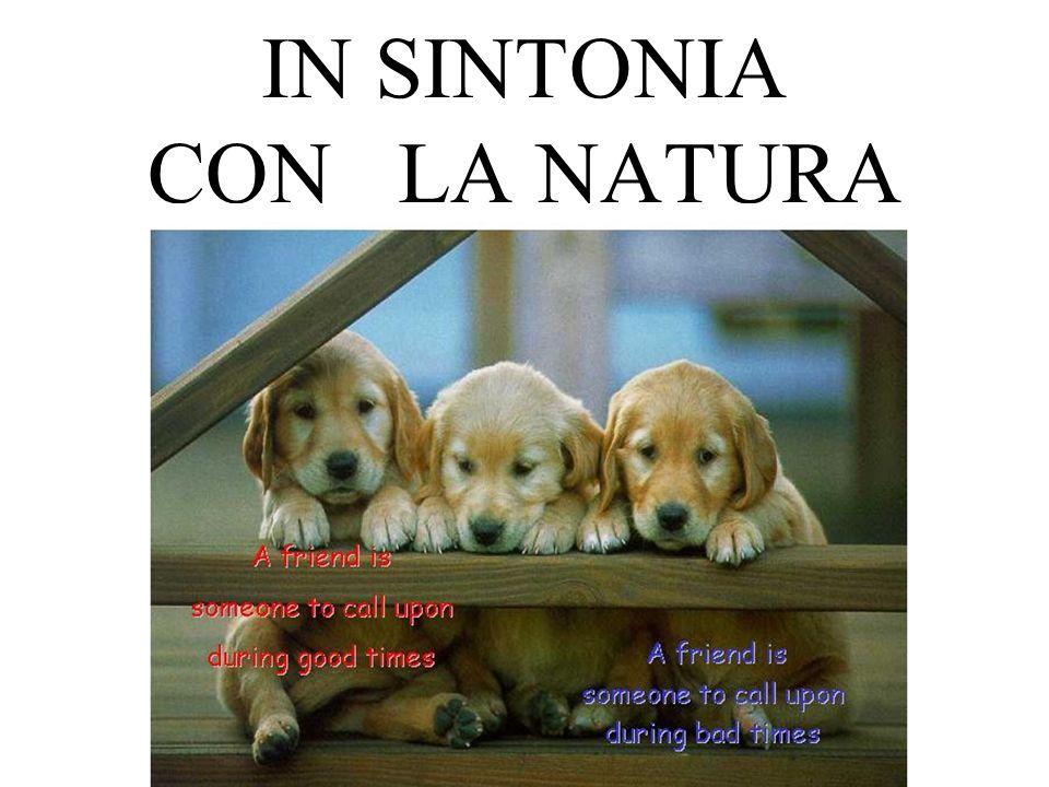 IN SINTONIA CON LA NATURA