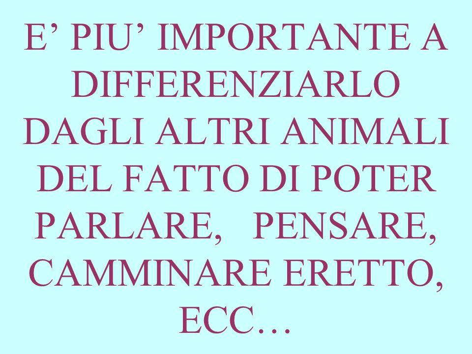 E' PIU' IMPORTANTE A DIFFERENZIARLO DAGLI ALTRI ANIMALI DEL FATTO DI POTER PARLARE, PENSARE, CAMMINARE ERETTO, ECC…