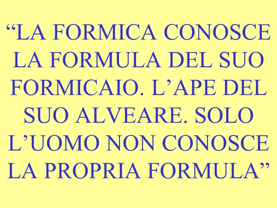 LA FORMICA CONOSCE LA FORMULA DEL SUO FORMICAIO. L'APE DEL SUO ALVEARE.