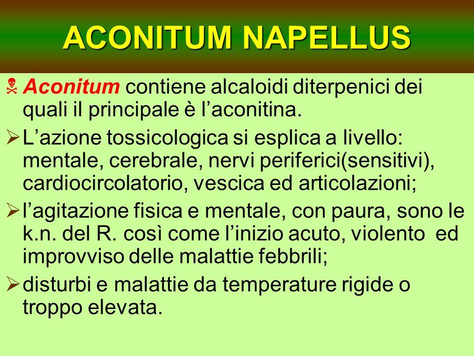 ACONITUM NAPELLUS Aconitum contiene alcaloidi diterpenici dei quali il principale è l'aconitina.