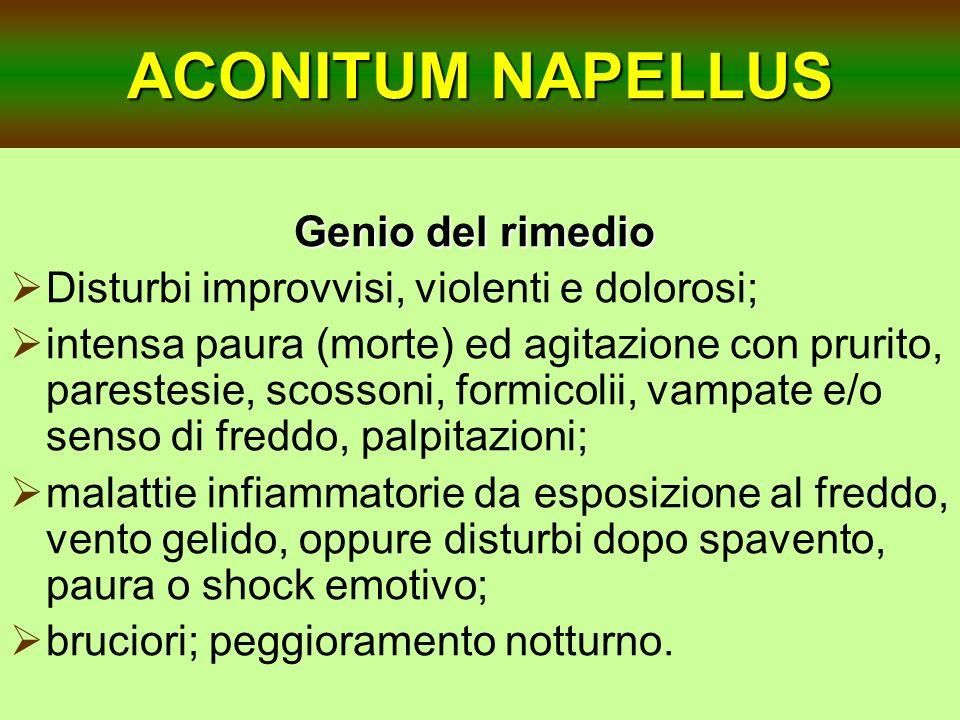 ACONITUM NAPELLUS Genio del rimedio
