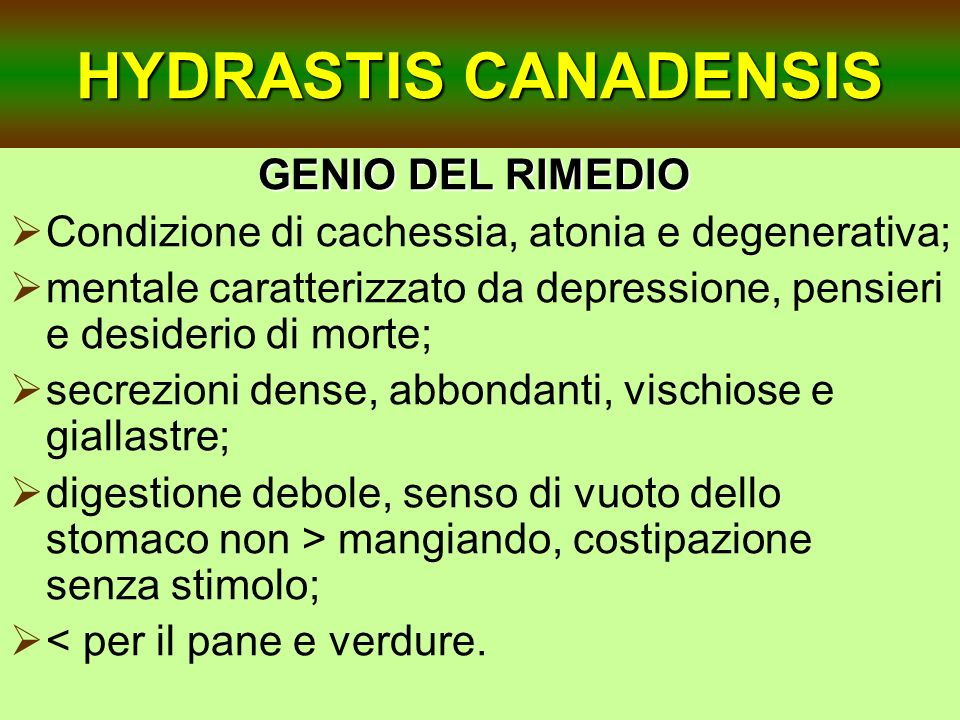 HYDRASTIS CANADENSIS GENIO DEL RIMEDIO