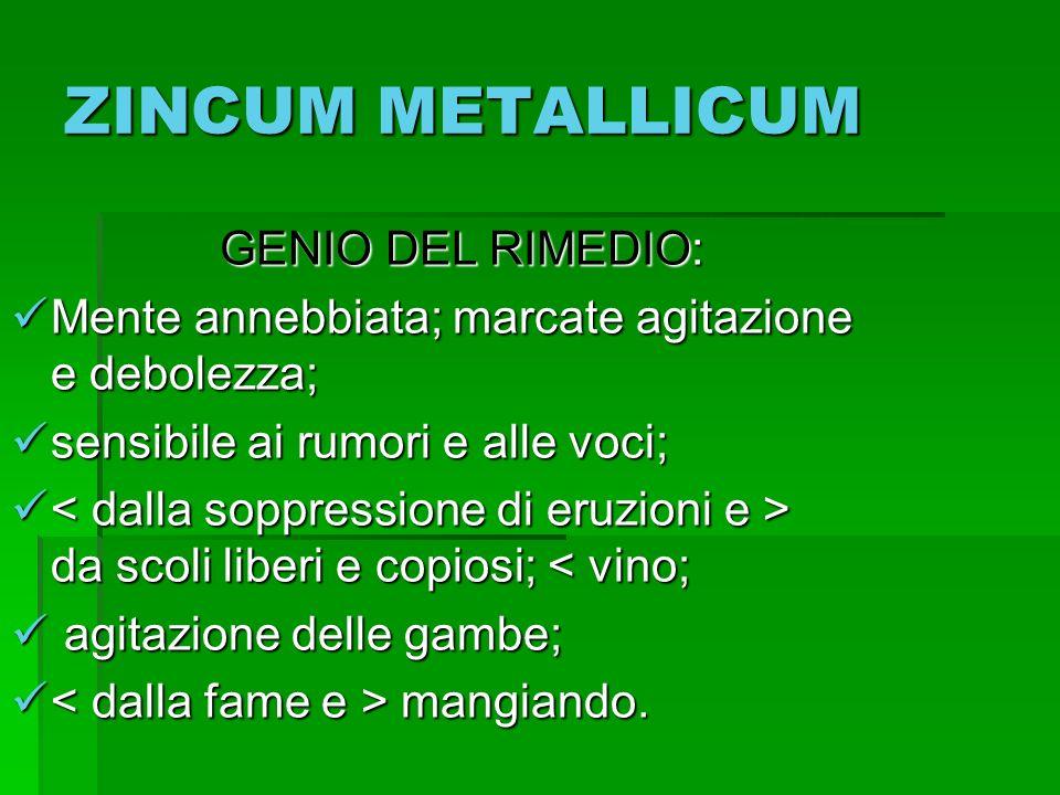 ZINCUM METALLICUM GENIO DEL RIMEDIO: