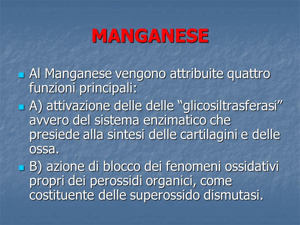 MANGANESE Al Manganese vengono attribuite quattro funzioni principali:
