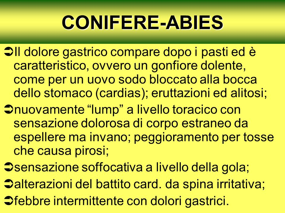 CONIFERE-ABIES