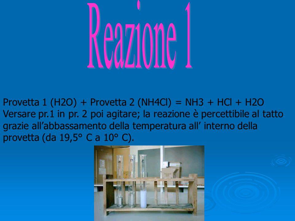 Provetta 1 (H2O) + Provetta 2 (NH4Cl) = NH3 + HCl + H2O