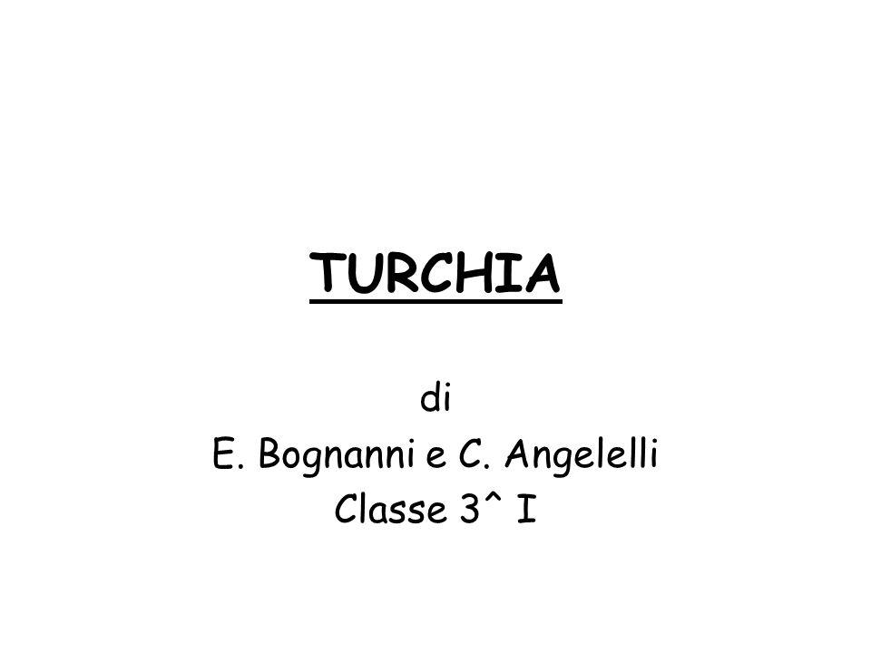 di E. Bognanni e C. Angelelli Classe 3^ I