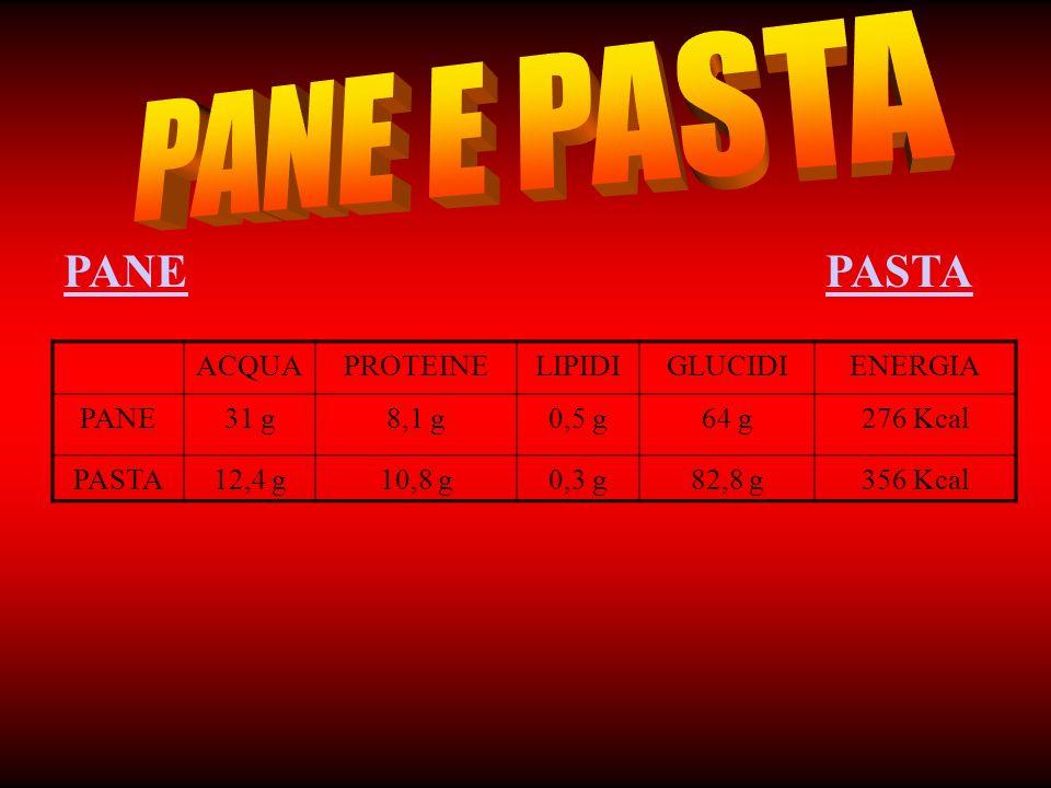 PANE E PASTA PANE PASTA ACQUA PROTEINE LIPIDI GLUCIDI ENERGIA PANE