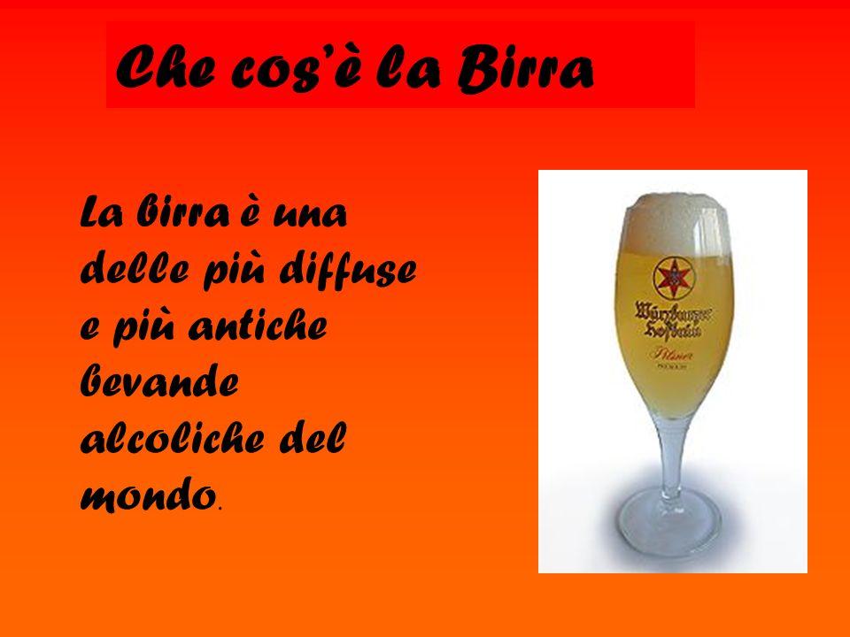 Che cos'è la Birra La birra è una delle più diffuse e più antiche bevande alcoliche del mondo.