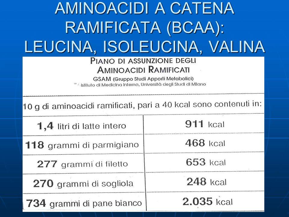 AMINOACIDI A CATENA RAMIFICATA (BCAA): LEUCINA, ISOLEUCINA, VALINA