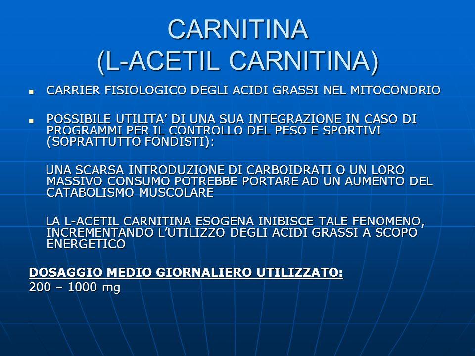 CARNITINA (L-ACETIL CARNITINA)