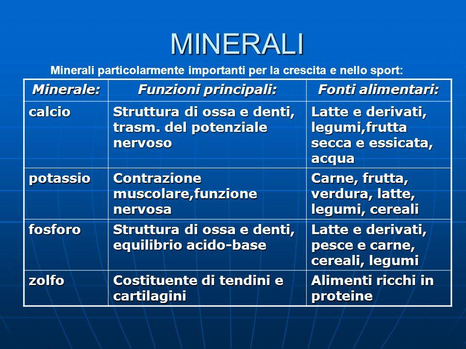MINERALI Minerale: Funzioni principali: Fonti alimentari: calcio
