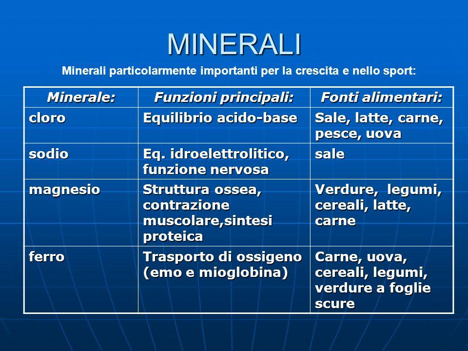 MINERALI Minerale: Funzioni principali: Fonti alimentari: cloro