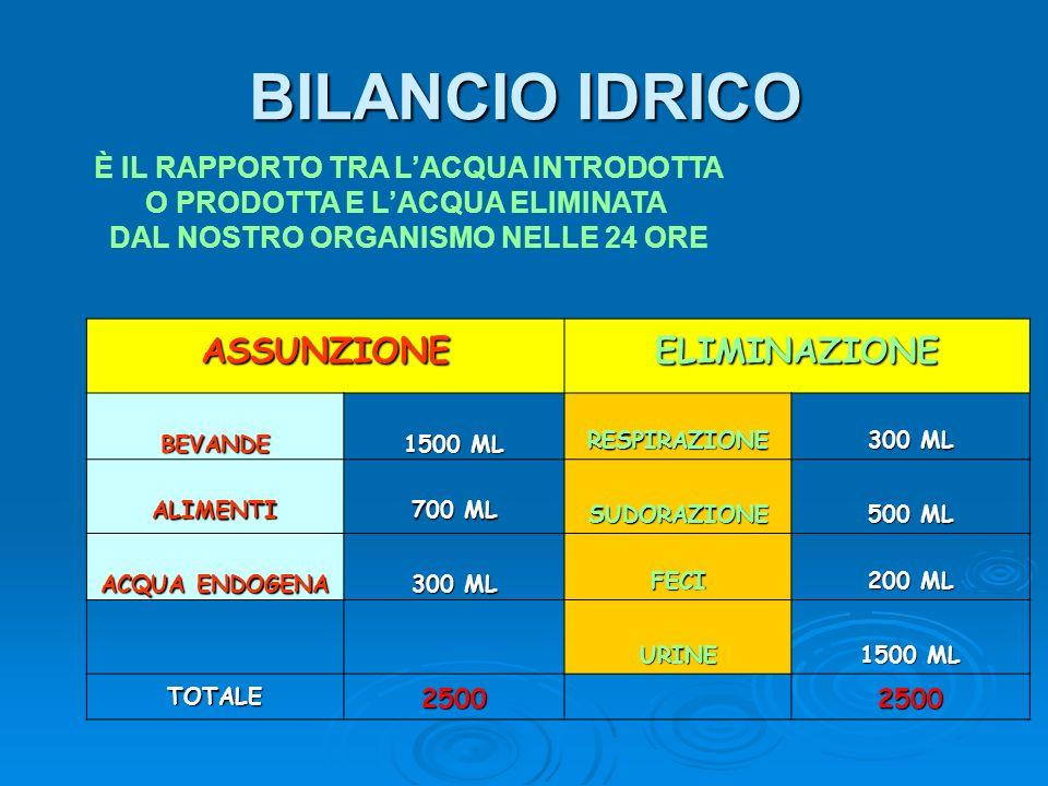 BILANCIO IDRICO ASSUNZIONE ELIMINAZIONE