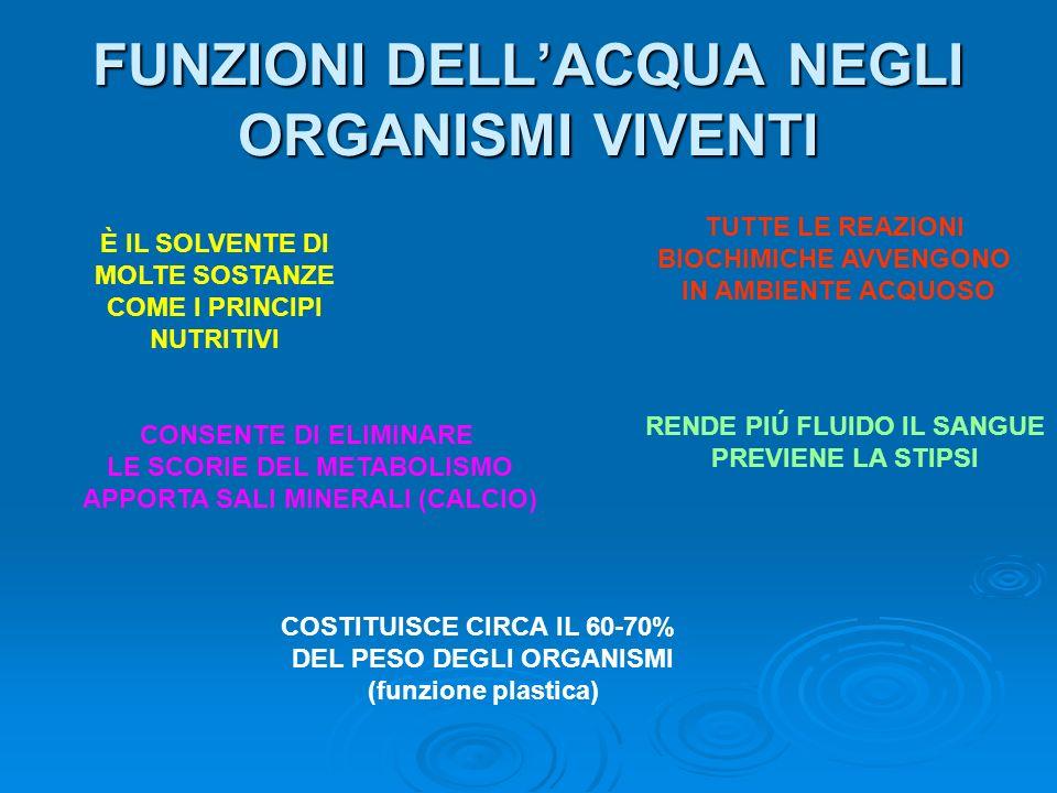 FUNZIONI DELL'ACQUA NEGLI ORGANISMI VIVENTI