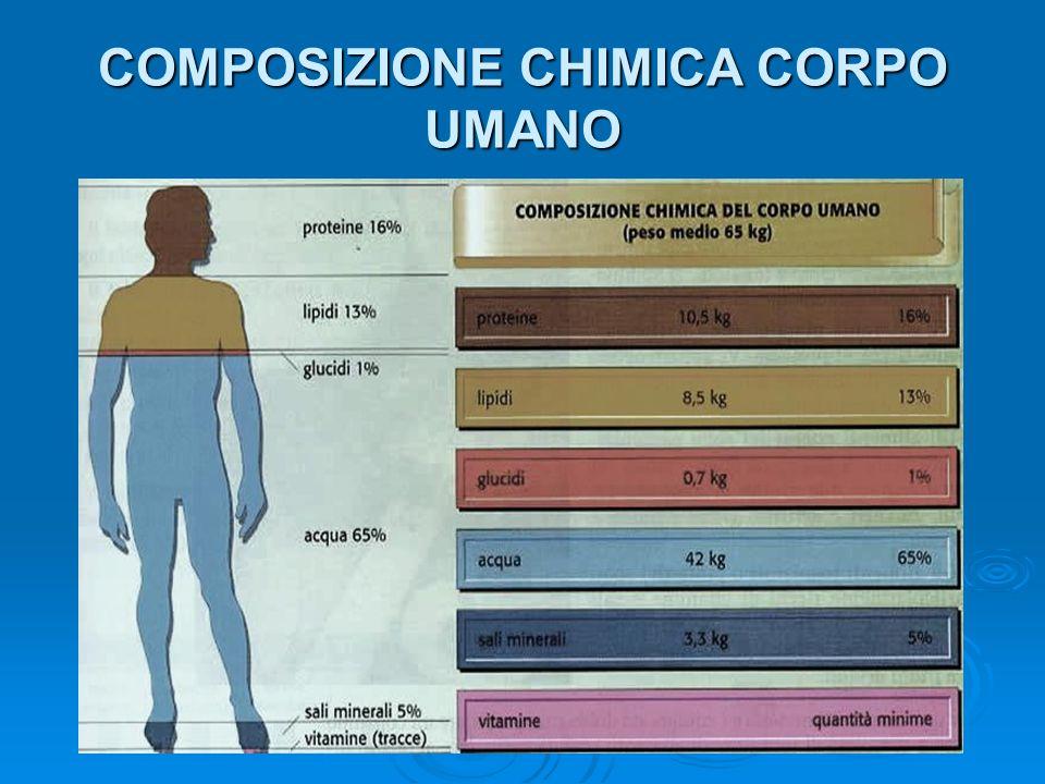 COMPOSIZIONE CHIMICA CORPO UMANO