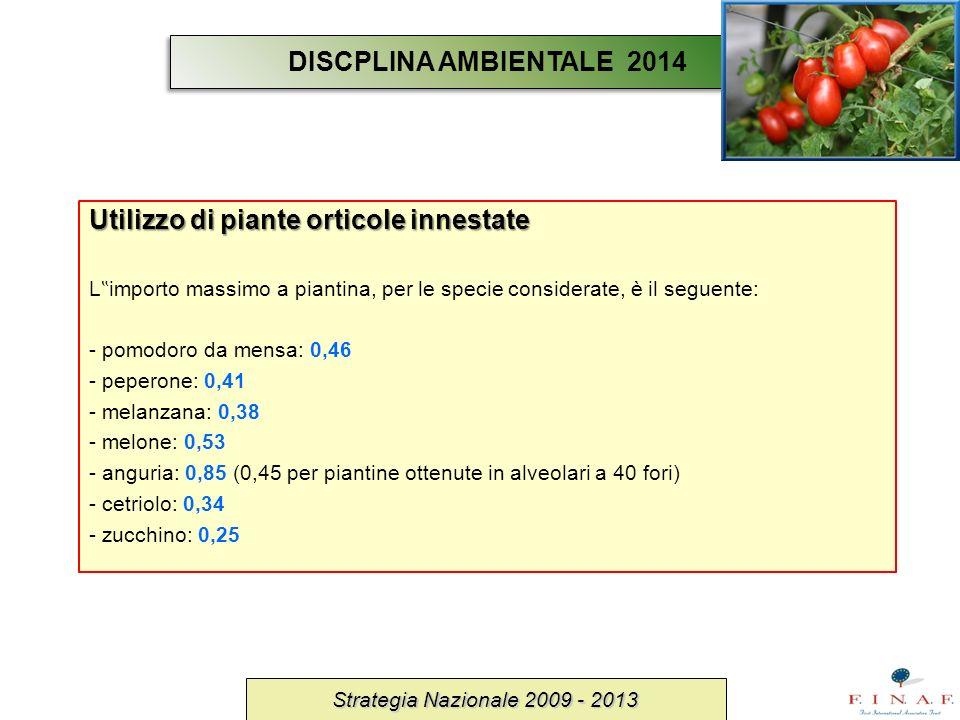 Utilizzo di piante orticole innestate
