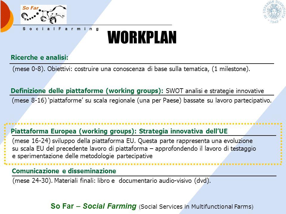 WORKPLAN Ricerche e analisi: (mese 0-8). Obiettivi: costruire una conoscenza di base sulla tematica, (1 milestone).