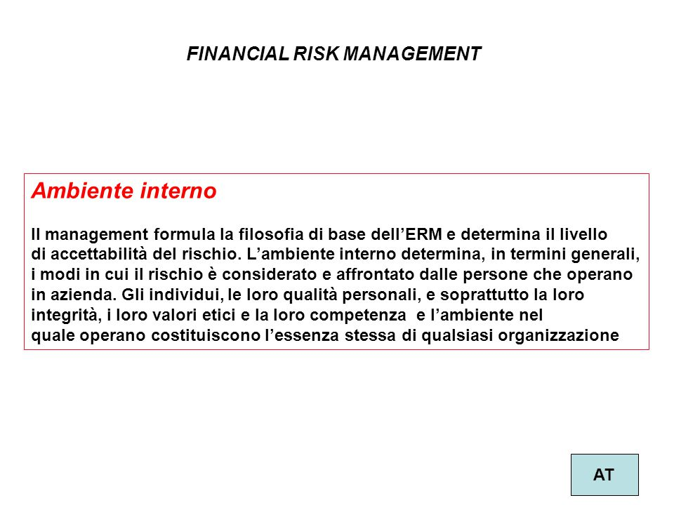 Ambiente interno FINANCIAL RISK MANAGEMENT