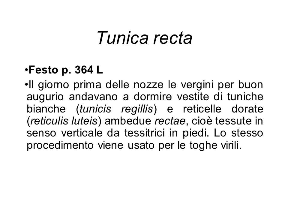 Tunica recta Festo p. 364 L.