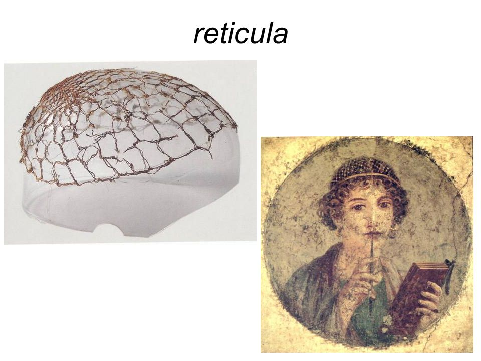 reticula