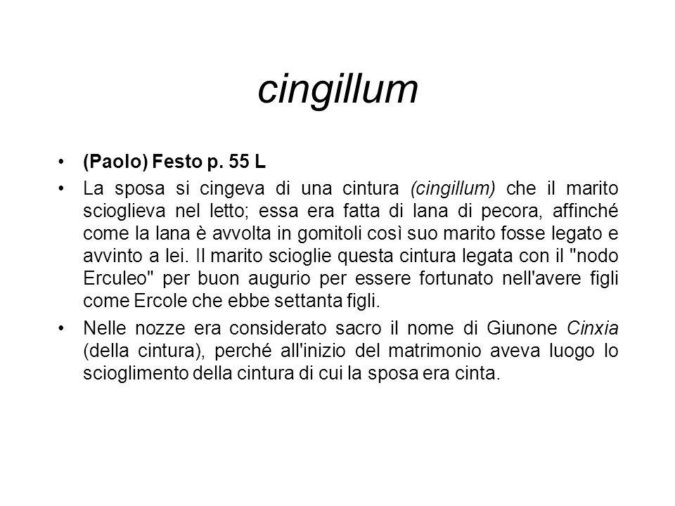 cingillum (Paolo) Festo p. 55 L
