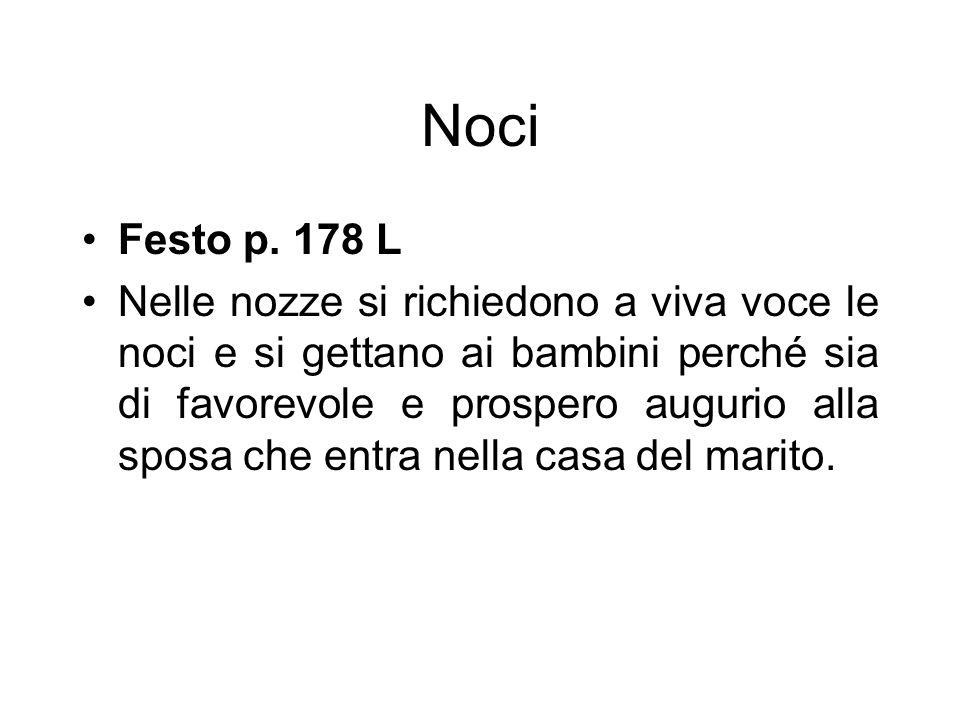 Noci Festo p. 178 L.