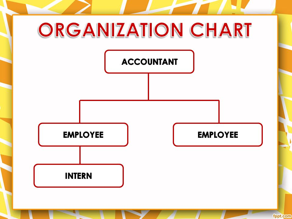 ORGANIZATION CHART ACCOUNTANT EMPLOYEE EMPLOYEE INTERN