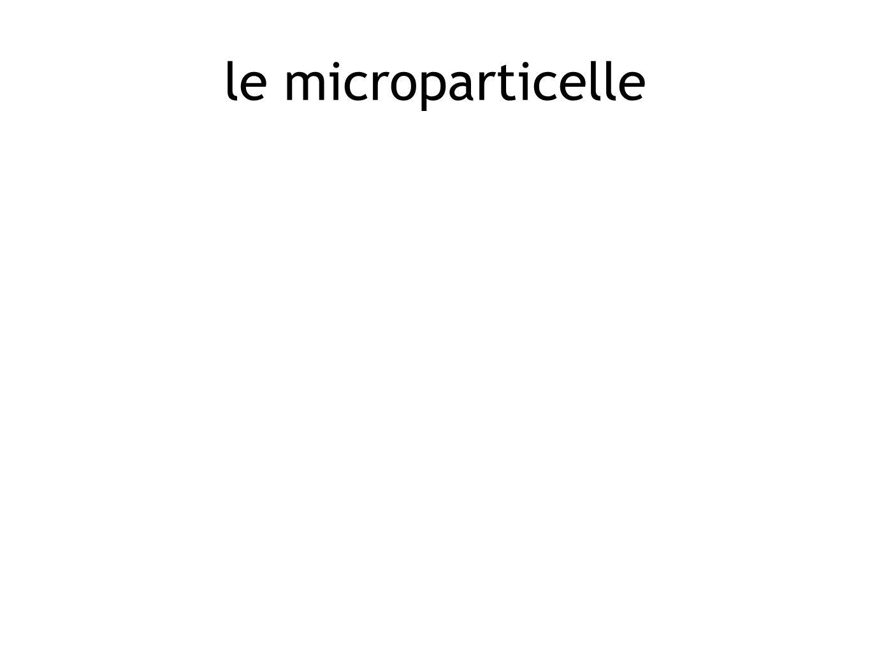 le microparticelle
